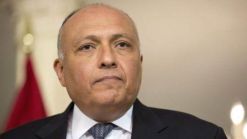 Главы МИД России и Египта отметили важность прилагаемых усилий для борьбы с ИГ