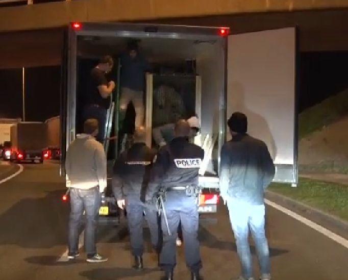 Нелегальные мигранты пытались проникнуть в Англию в грузовике с белым медведем из России