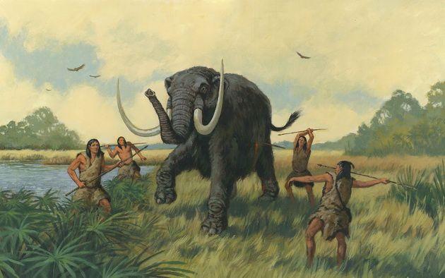 Учёные нашли неопровержимые доказательства вины людей в исчезновении мамонтов