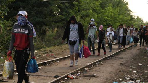 МВД Хорватии: у Словении нет причин ограничивать приём беженцев
