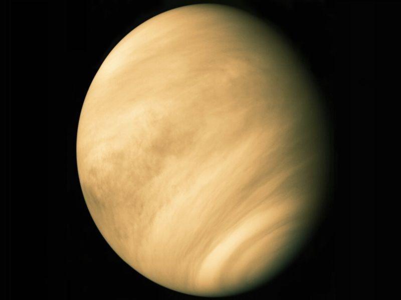 На Венере может существовать жизнь - учёные