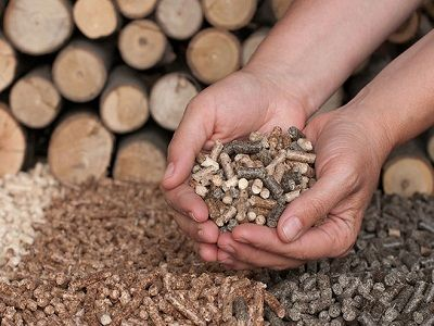 IEA: Bioenergy can play a key role in decarbonising energy systems