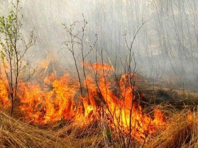 В Липецкой области с 10 апреля вводитсяпожароопасный период