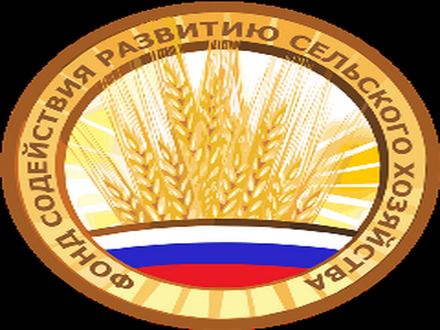 Фонд содействия развитию сельских территорий ждёт реорганизация