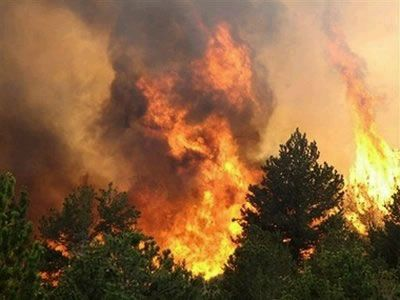 MFA of Hungary expresses its sympathies with regard to the latest forest fires in Portugal