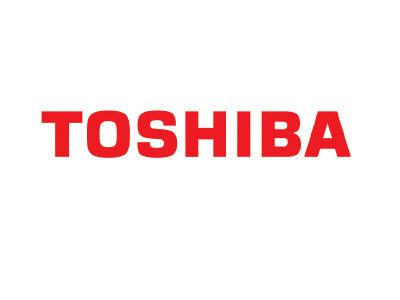 Toshiba Completes Full and Early Payment of Guarantee Obligations for the V.C. Summer Nuclear Power Plant Project in South Carolina, U.S.A.