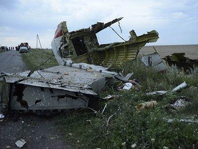 Нидерланды считают, что Украина тоже может быть виновна в крушении MH17