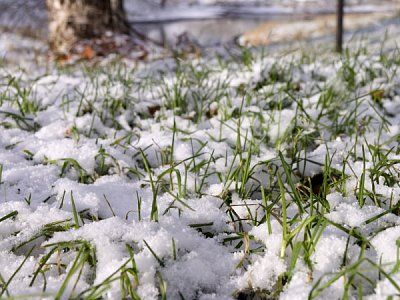 Сколько снега ждать летом