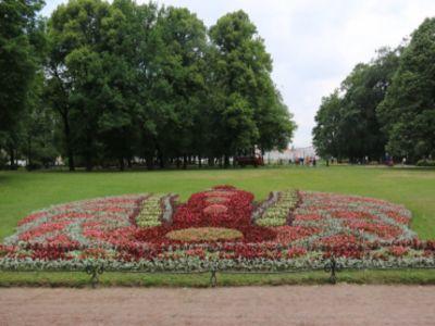 В Петербурге прошёл Фестиваль цветов