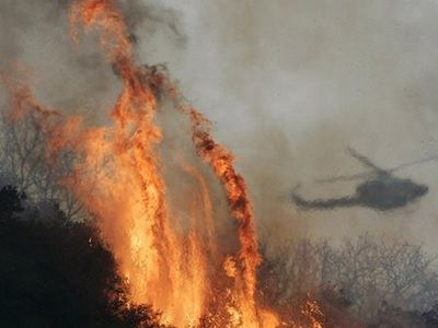 В Канаде продолжается борьба с лесными пожарами: новые подробности с мест стихийного бедствия