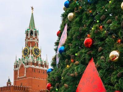 Главную ёлку России привезут из Подмосковья