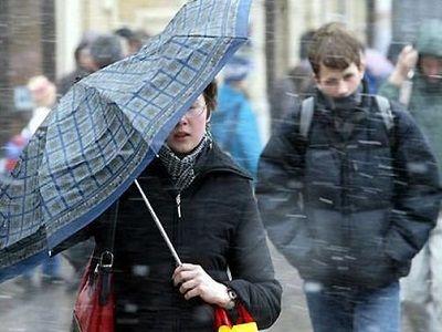 В Москве восемь человек пострадали при падении деревьев от сильного ветра