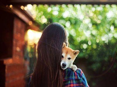 Туристка погибла от укуса щенка на отдыхе