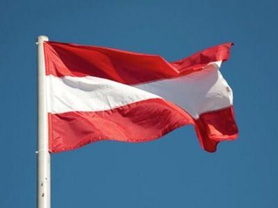 В Австрии сформировано переходное правительство