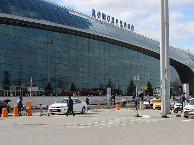 На землях аэропорта «Домодедово» сделают тропический курорт