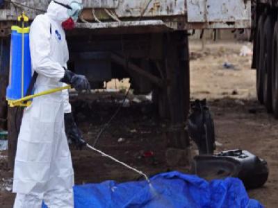 В России создали уникальную вакцину от Эболы
