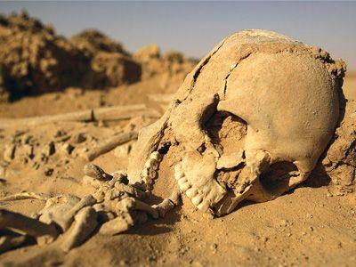 Artifacts of Unknown Civilization Found in Ecuador