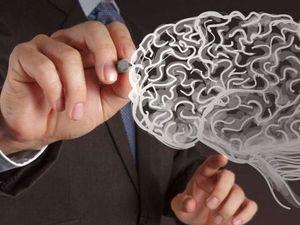 Учёные обнаружили способ омолодить мозг