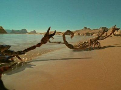Учёные нашли останки древнейшего скорпиона на планете