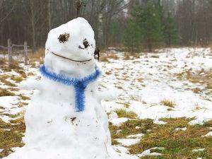 Синоптики пообещали москвичам температуру выше нормы