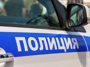 Полиция ищет отца двух детей, бросившего их в «Шереметьево»