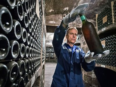 Supplies of Russian Wine to Ukraine Increased by almost 50%