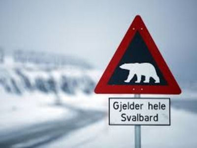Norwegian Foreign Ministry: Oslo Does not Violate the Svalbard Treaty