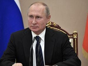 Путин заявил о готовности помочь Италии в борьбе с коронавирусом