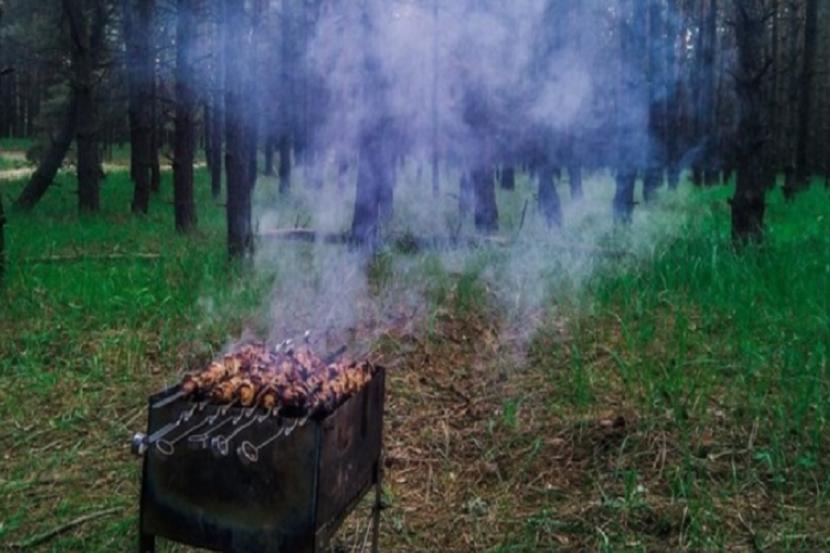В Москве на майские праздники закроют вход во все лесопарковые зоны