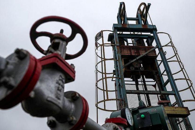 Brent Oil Price Grew above 29 Dollars
