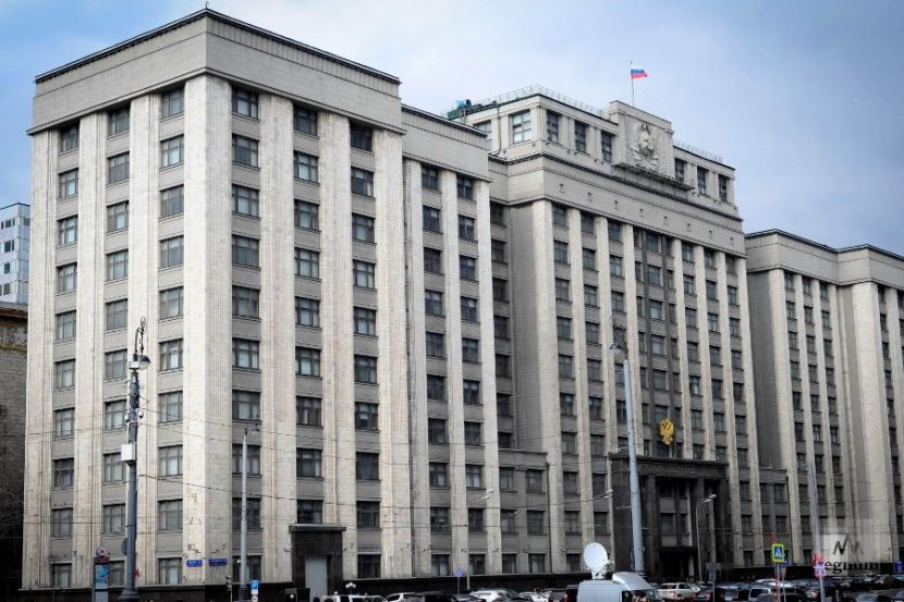 Russian Deputy Commented on the Idea of Holding Negotiations on Donbass without Moscow