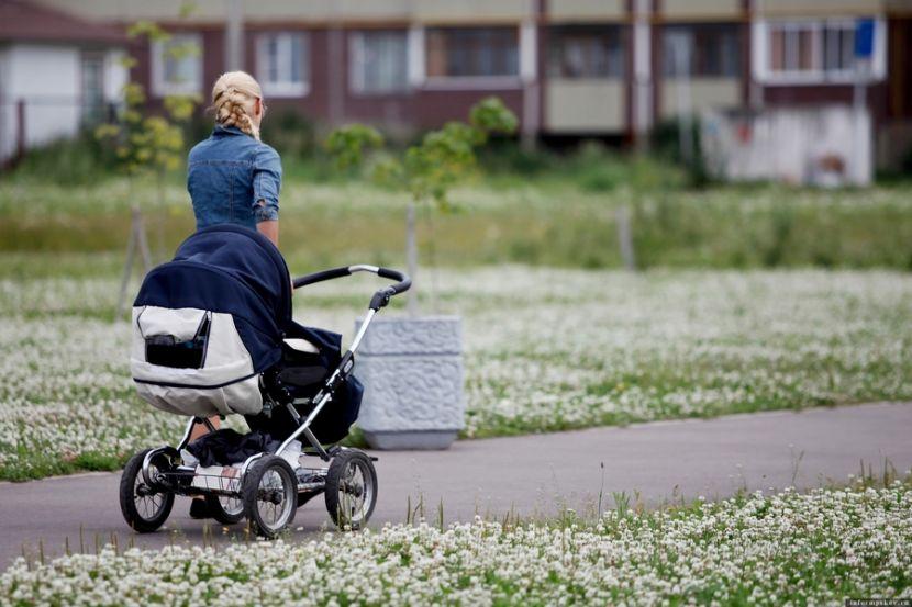 В ГД прокомментировали идею о введении нового пособия для родителей-одиночек