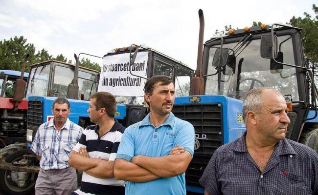 Молдавские фермеры вышли на митинг из-за отсутствия поддержки государства