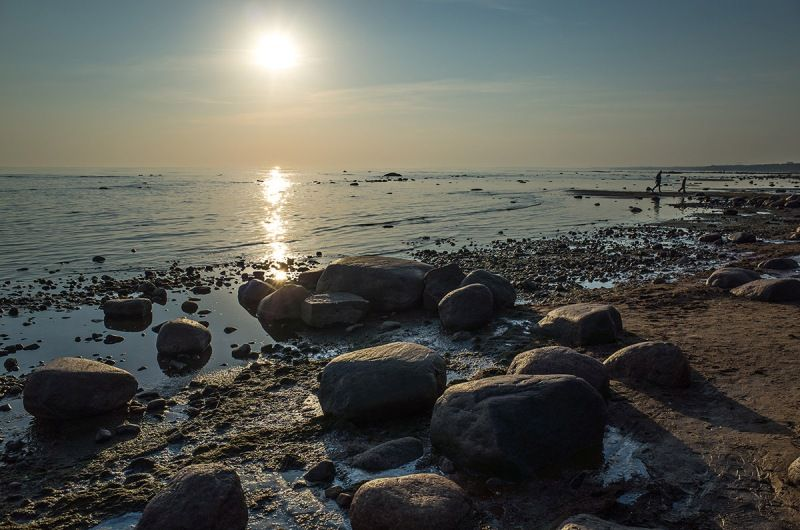 В Финском заливе нашли затонувший 300 лет назад корабль с сохранившимся джином
