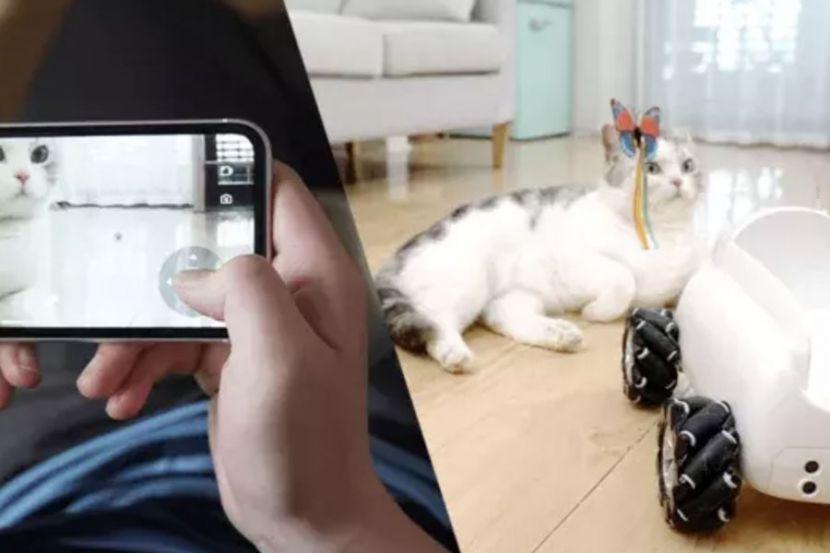 Xiaomi разработали робота для развлечения домашних питомцев