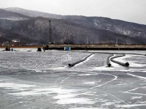 The Сonstruction of the Plant on Baikal was Suspended