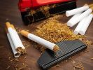 Managers of Russian President Bought Cigarettes for 19 Million Rubles
